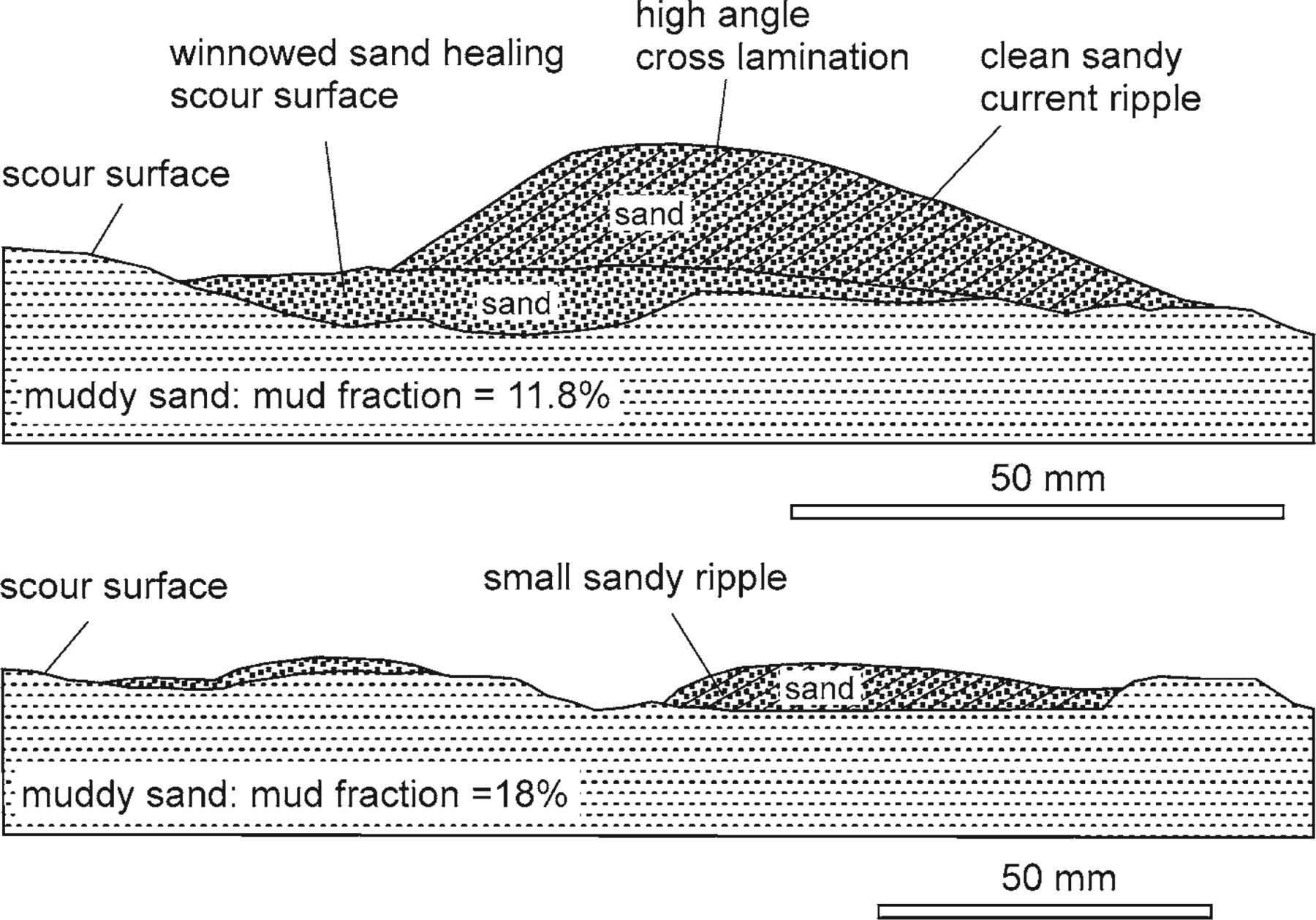 Predicting Bedforms And Primary Current Stratification In